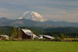 One of the beautiful farms I ran and biked past in Enumclaw during the race!